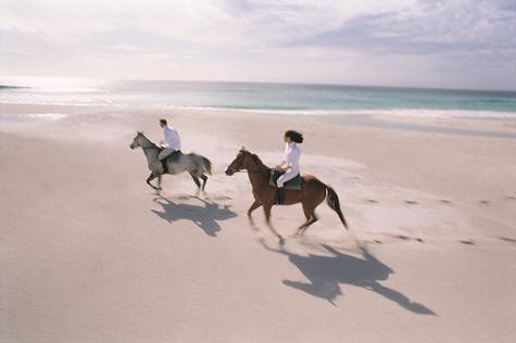 Horses on the beaches of the Silver Coast